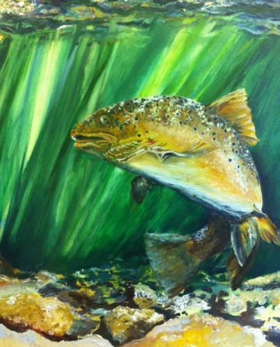 Rainbow Trout. Oil on Canvas