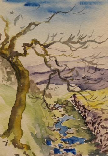 Welsh Brook Sketch. Watercolour. 21 x 15cm