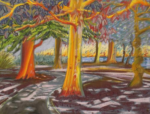 South Lake Woodley. Chalk Pastel. 40 x 30cm